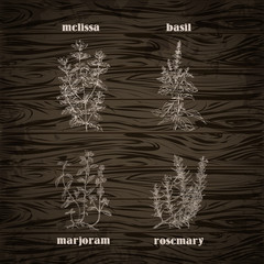 Cooking herbs and spices on a wooden background. Rosemary, marjoram, basil, melissa. Retro hand drawn vector illustration