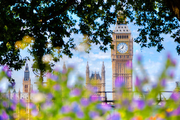 Wall Mural - Big Ben,, London UK. View from a public garden with flowers and trees