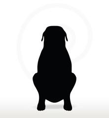 dog silhouette