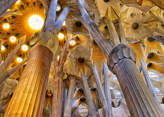 Ceilings of the Sagrada Familia Cathedral in Barcelona