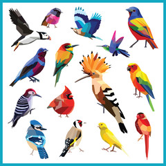 Birds-set of 15 birds low poly chalkboard design isolated.Bee eater,canary,blue jay,cardinal,cotinga,finch,hoopoe,hummingbird, indian roller,bunting,puffin,robin,wood packer,parakeet