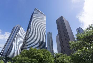 新宿高層ビル街 快晴 青空 緑 超ワイド 見上げる コピースペース
