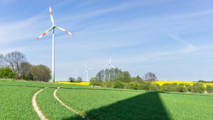 Schatten einer Windkraftanlage auf dem Feld