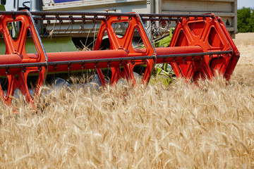An agricultural combine cutting and harvesting wheat in the fertile farm fields of Idaho.