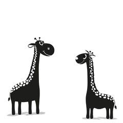 Two cute giraffes in black