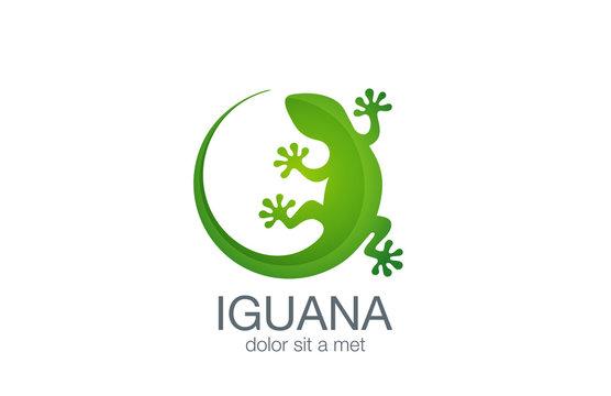 Lizard Logo design vector template. Iguana icon illustration...S
