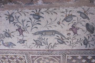 the mosaics of the ancient Roman house in Libya - Villa Sileen