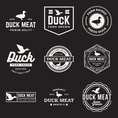 vector set of premium duck meat labels, badges and design elemen