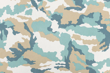 Camouflage pattern and background.