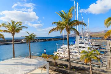 Palm trees in Puerto Calero marina built in Caribbean style, Lanzarote island, Spain