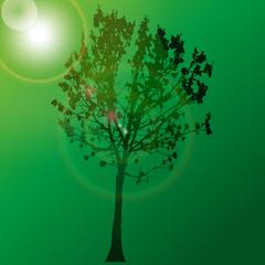 Tree with sun