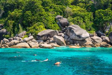 Travelers are swimming and snorkeling in Andaman sea at Similan
