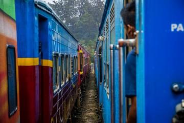 riding the train in sri lankan landscape