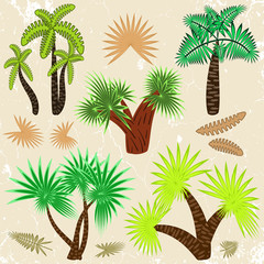 a set of palm trees and palm leaves in the style of cartoon