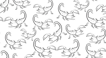 Vector seamless background of contours Scorpions on a white background. Pattern of randomly distributed Scorpions.