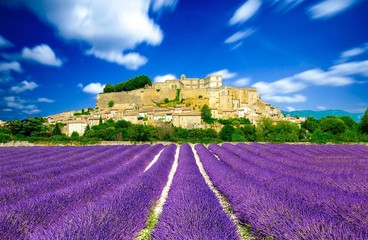 Poster Prune Provence - Lavender fields in France