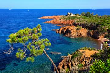 Esterel, tree, rocks beach coast and sea. Cote Azur, Provence, F Fototapete
