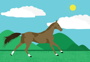 portrait of a brown horse, vector eps