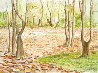 landscape watercolor on paper
