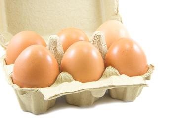 Eggs in paper egg carton on white background