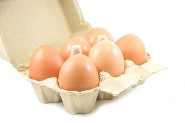 Eggs in paper egg carton on white background