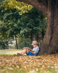Boy reading under the big linden tree