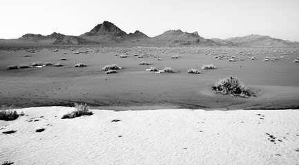 High Contrast Monochrome Black White Bonneville Salt Flats
