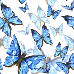 Beautiful blue summer watercolor butterflies on a white