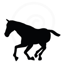 horse silhouette in gallop pose