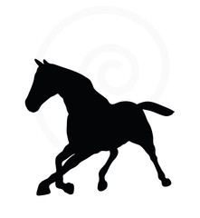 horse silhouette in fast trot pose