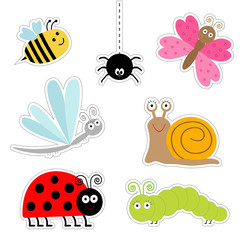 Cute cartoon insect sticker set. Ladybug dragonfly butterfly caterpillar spider snail. Isolated. Flat design