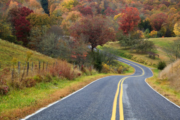 Winding Road in the Fall Season