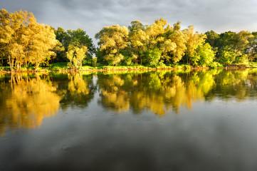 Green bank of Bug river