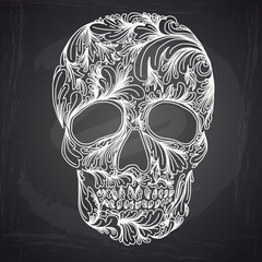 Vector illustration with Hand Drawn Skull.