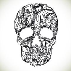 Vector illustration with Hand Drawn Skull.