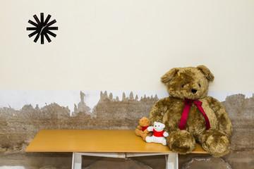 Toy teddy bear.