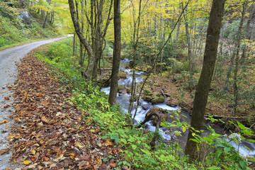 Gravel Road Beside a Creek