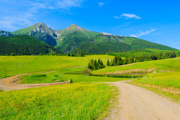 Wall Mural - Road in green valley in summer landscape of Tatra Mountains, Slovakia