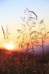 Zachód słońca połonina wetlińska - fototapety na wymiar