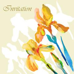 Beautiful iris flower, postcard