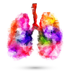 Abstract human lungs with multicolored polygon on white