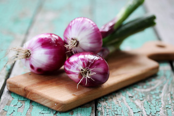 Fresh purple onion