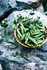Green peas on stone