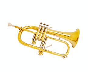 Golden tuba isolated on white background