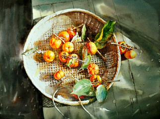 watercolor painting persimmon