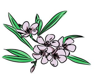 Floral sketch pattern  for design