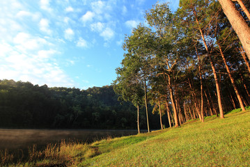 sunrise at Pang-ung, pine forest park in Thailand