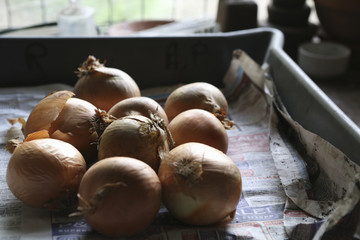Onions in paper-lined tray