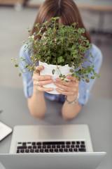 mitarbeiterin versteckt sich hinter pflanze