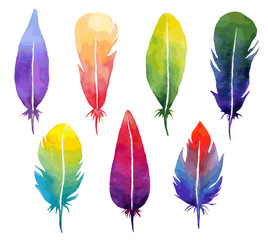 Vector watercolor feather set.